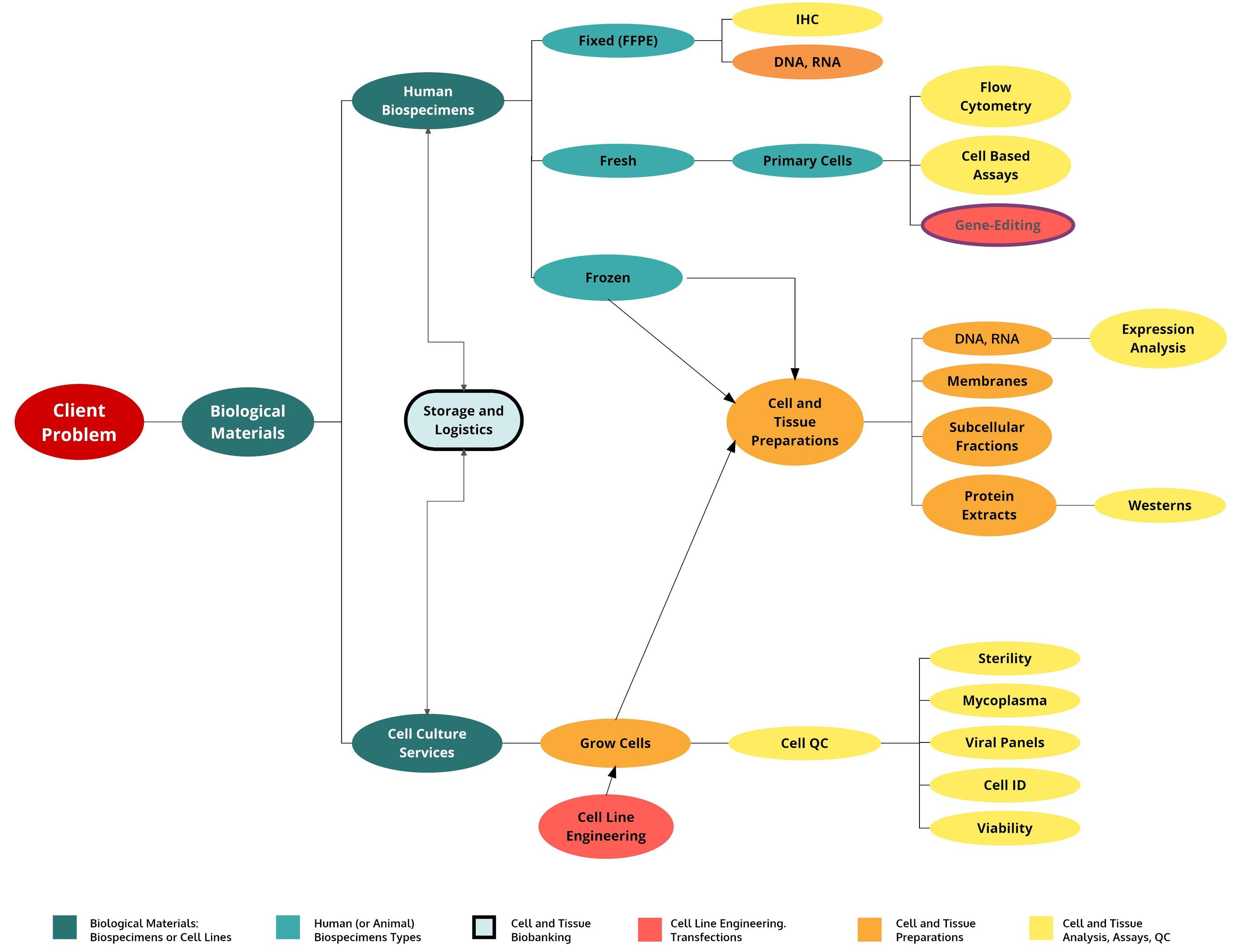 Product Service Mind Map 3 backup